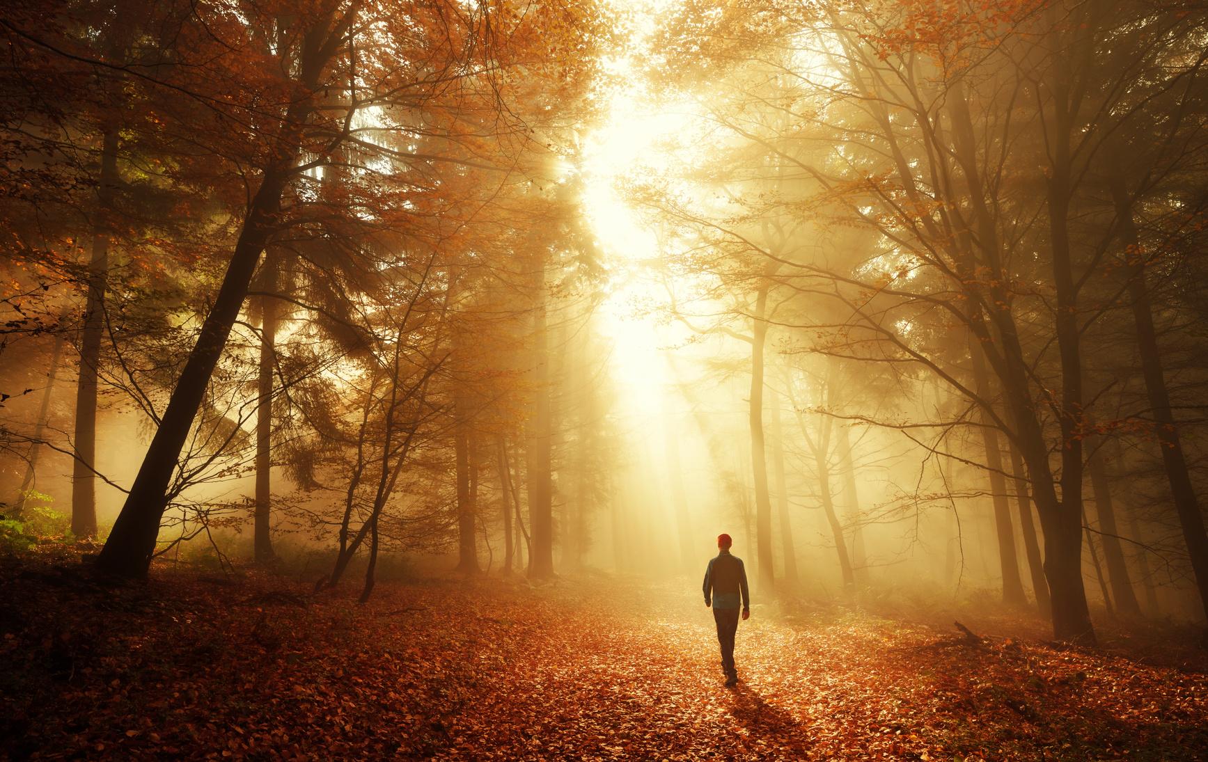 Mit Der Kraft Der Natur In Ein Neues Leben Liebe Ruhe