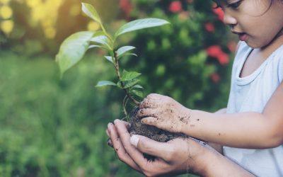 Kinder nachhaltig erziehen: Warum es so wichtig ist und wie es gelingt
