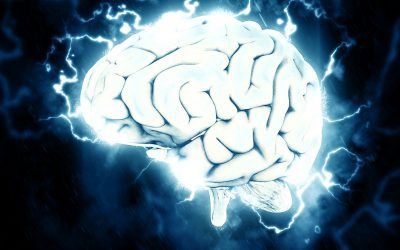 """Über das Buch """"Keeping the brain in mind"""""""