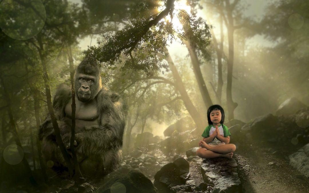 Mein Gorilla im Dschungel